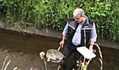 Alles Wasser Teil 3 Die Revitalisierung von Fließgewässern